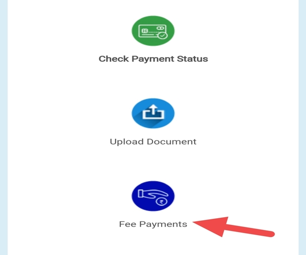 driving licence online fees